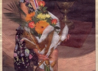 Shakhmatnaya Nedelia  (June 2005, Russian)